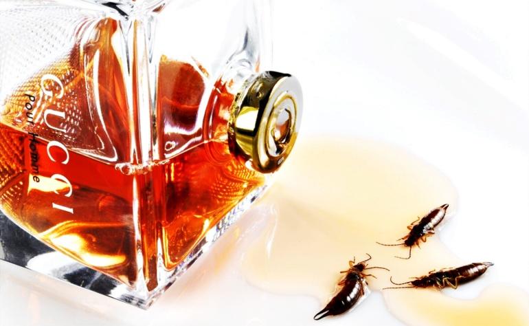 Czy warto kupować podróbki perfum?