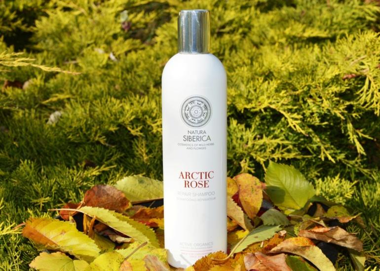 Natura Siberica Arctic Rose – szampon odbudowujący do włosów suchych i zniszczonych
